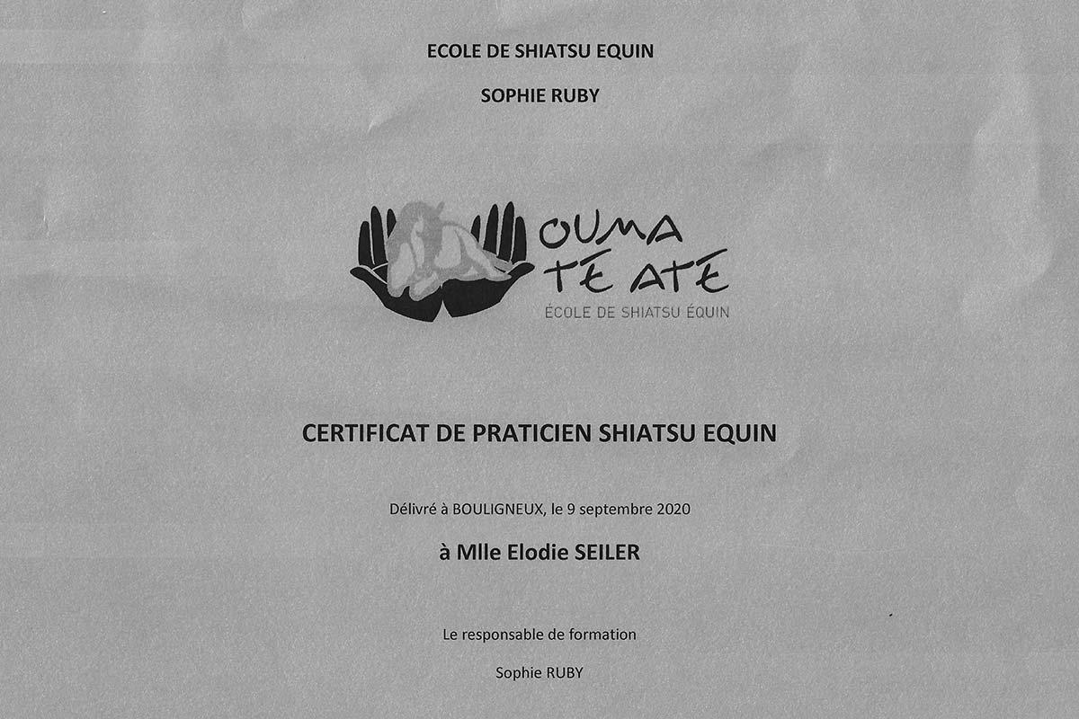 Diplôme de Shiatsu Equin - Elodie Seiler